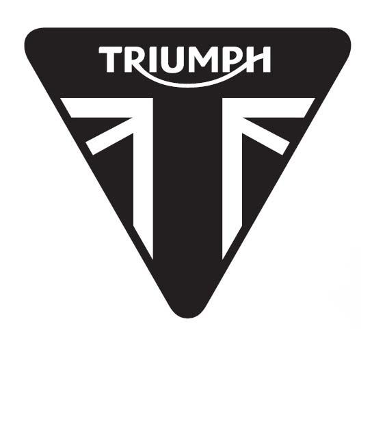 Moto Triumph 1200 Cm3 Occasion Custom 2018 13790